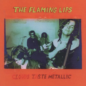 The Flaming Lips - Christmas At the Zoo
