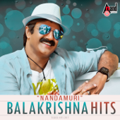 Nandamuri Balakrishna Hits