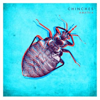 Chinches - Single - Amatria