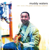 Muddy Waters - Sittin' Here And  Drinkin' artwork