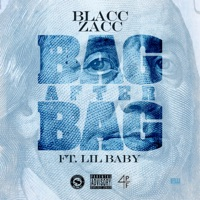 Bag After Bag (feat. Lil Baby) - Single Mp3 Download