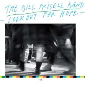 The Bill Frisell Band - Remedios the Beauty