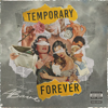 ABaire - Temporary Forever  artwork