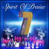 Spirit of Praise - Ngaphandle Kokuthi (feat. Thinah Zungu & Ayanda Ntanzi) [Live] artwork