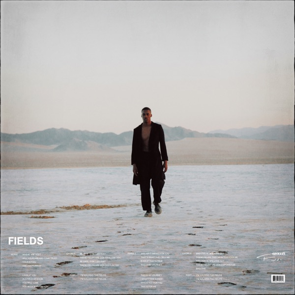 Fields - Single