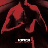 Godflesh - New Dark Ages
