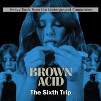 Various Artists - Brown Acid - The Sixth Trip artwork