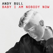Andy Bull - Baby I Am Nobody Now