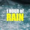 1 HOUR of Rain Sounds for Sleep Sleep Music Collection