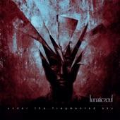 Lunatic Soul - Shadows