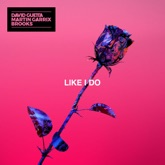 Like I Do - Single