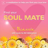 Find Your Soul Mate (unabridged)