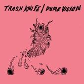 Dumb Vision - The Fall
