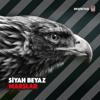 Erkan Korkmaz, Birol Can & Stefo Seyisoğlu - Bir Gün Değil Her Gün Beşiktaş artwork