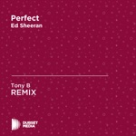 Perfect (Tony B Unofficial Remix) [Ed Sheeran] - Single