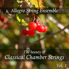 The Beauty of Classical Chamber Strings, Vol. 1