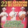 22 Huapangos Huastecos