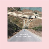 See You on the Other Side - Single