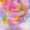 Jodi Picoult - A Spark of Light: A Novel (Unabridged)  artwork
