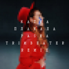 KAZKA - ПЛАКАЛА (Pasha Trimbeater Remix) artwork