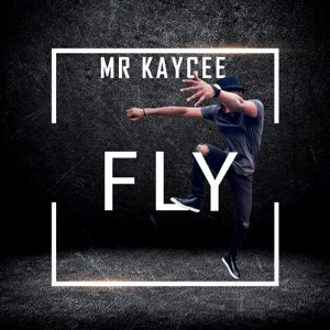 Fly (feat. 2Face Idibia) - Single Mp3 Download