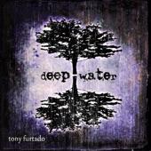Tony Furtado - The Bawds of Euphony