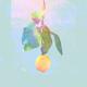 米津玄師 - Lemon MP3