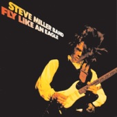 Steve Miller Band - Wild Mountain Honey
