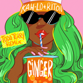 Ginger (Todd Terry Remix)