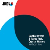 Without You (feat. Crystal Waters) - EP
