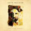 Seth Walker - Are You Open?  artwork
