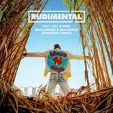 These Days (feat. Jess Glynne, Macklemore & Dan Caplen) [Camelphat Remix] - Single