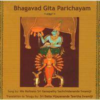 Sri Ganapathy Sachchidananda Swamiji & Sri Datta Vijayananda Teertha Swamiji - Bhagavad Gita Parichayam artwork