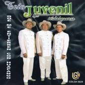Trio Juvenil Hidalguense - Que Me Entierren Con Huapango
