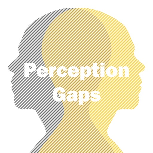Cover image of Perception Gaps