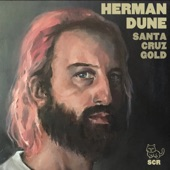 Herman Dune - Life on the Run
