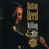 Dalton Reed - Never Never Land