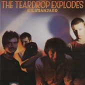 The Teardrop Explodes - Thief Of Baghdad
