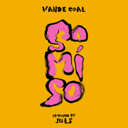 So Mi So - Wande Coal - Wande Coal
