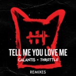 songs like Tell Me You Love Me (Toby Green Remix)