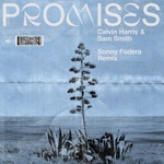 Promises (Sonny Fodera Extended Remix) - Single
