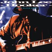 Boom Boom John Lee Hooker - John Lee Hooker