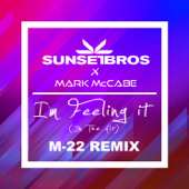 I'm Feeling It (In the Air) [M-22 Remix]
