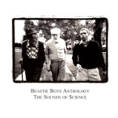 Beastie Boys - Brass Monkey