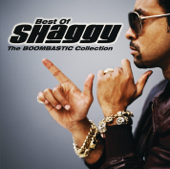 It Wasn't Me Feat. Ricardo Ducent [feat. Ricardo Ducent]  Shaggy - Shaggy