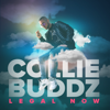 Collie Buddz - Legal Now artwork