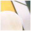 Fitz Ambro$e & Submerse - Piccolina (feat. Devin Morrison) ilustración