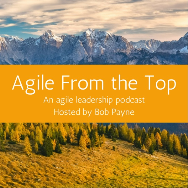 Agile From the Top