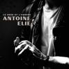 Antoine Elie - La rose et l'armure (Radio Edit) illustration