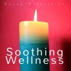 Soothing Wellness Sauna Relaxation Zen Spa Tracks Sauna Relaxation Well Being Music with Natural Sounds